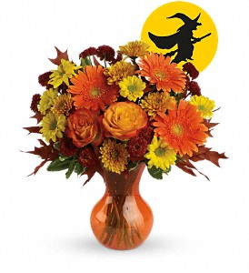 Hocus Pocus by Teleflora in Bloomington IL, Beck's Family Florist