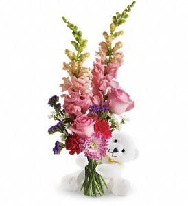 Teleflora's Bear Hug Bear with Pink Roses in Hartford CT, Dillon-Chapin Florist