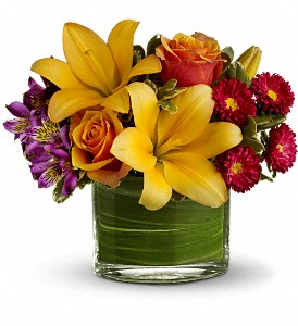 Teleflora's Blossoms of Joy in San Diego CA, Mission Hills Florist