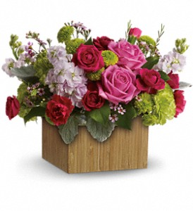 Teleflora's Garden Delights in Lake Charles LA, A Daisy A Day Flowers & Gifts, Inc.