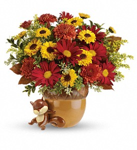 Teleflora's Send a Hug Squirrel Away Bouquet in Houston TX, Village Greenery & Flowers