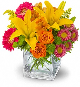 Teleflora's Summertime Splash by Petals & Stems in Dallas TX, Petals & Stems Florist