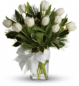 Tulips and Pine in Torrance CA, Villa Hermosa Plant Shop