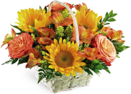 Happy Blooms in Nationwide MI, Wesley Berry Florist, Inc.
