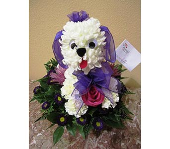 Puppy in Staunton VA, Rask Florist, Inc.