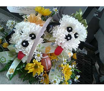 Twin Puppy Basket in Staunton VA, Rask Florist, Inc.