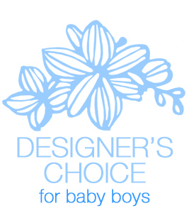 Designer''s Choice - Baby Boy in Dallas TX, Dr Delphinium Designs & Events