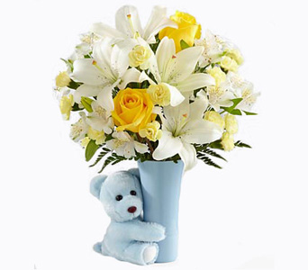 Baby Boy Big Hug in Baltimore MD, Raimondi's Flowers & Fruit Baskets