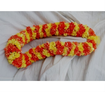 VIP Carnations  Lei in San Diego CA, Flowers Of Point Loma