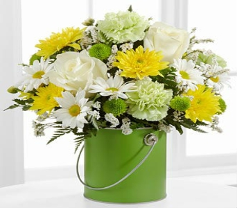 Color Your Day Green in Kingsport TN, Holston Florist Shop Inc.