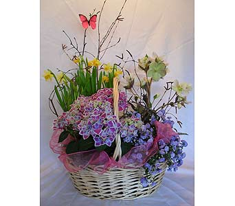 Spring Garden in Crafton PA, Sisters Floral Designs
