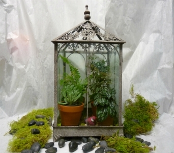 TERRARIUM in Pittsburgh PA, Harolds Flower Shop
