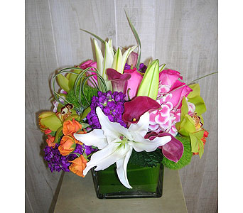 Your Fragrance in Dallas TX, Petals & Stems Florist