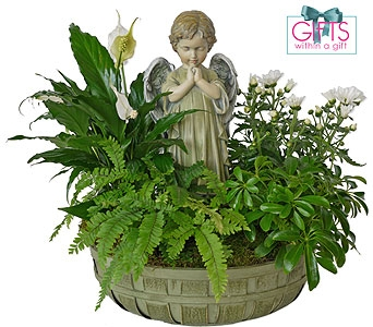 Praying Angel Plant Basket in Dallas TX, In Bloom Flowers, Gifts and More