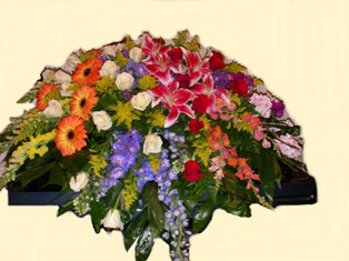 Color Infused Casket Spray in Lake Charles LA, A Daisy A Day Flowers & Gifts, Inc.