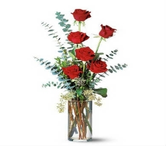 Premium Rose Elegance in Warren MI, Downing's Flowers & Gifts Inc.