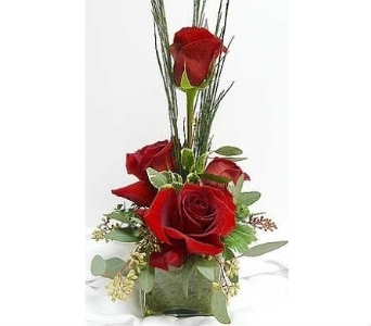 Premium Rose Cube in Warren MI, Downing's Flowers & Gifts Inc.