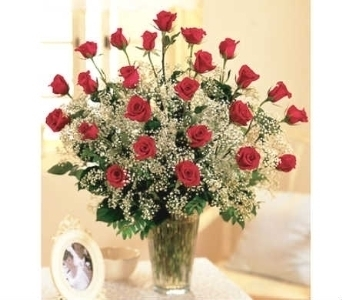 Premium Two Dozen Roses Arranged in Warren MI, Downing's Flowers & Gifts Inc.