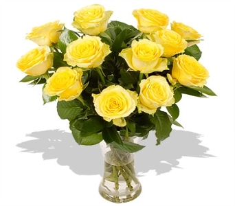 One Dozen Yellow Roses Vased in Louisville KY, Hedman's Suburban Florist