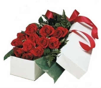 Premium Dozen Roses Boxed in Warren MI, Downing's Flowers & Gifts Inc.