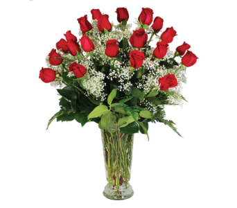 Perfect Love, Two Dozen Rose Bouquet in Las Vegas NV, Tiger Lily Floral