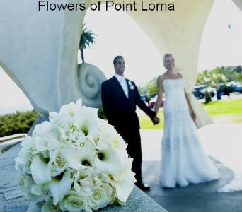 Stacey in San Diego CA, Flowers Of Point Loma