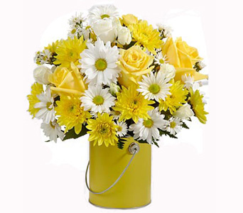 Color Your Day With Sunshine in Baltimore MD, Raimondi's Flowers & Fruit Baskets