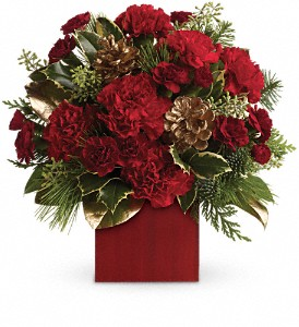 Laughter and Cheer by Teleflora in San Angelo TX, Bouquets Unique Florist