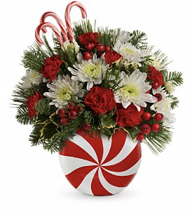 Teleflora's Candy-Striped Christmas Bouquet in Santa Clara CA, Citti's Florists