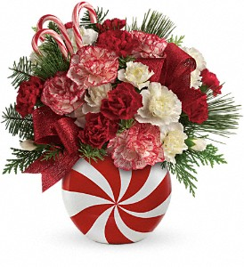 Teleflora's Peppermint Christmas Bouquet in Northumberland PA, Graceful Blossoms