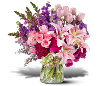 Ultimate Express Flower Arrangement in Norristown PA, Plaza Flowers