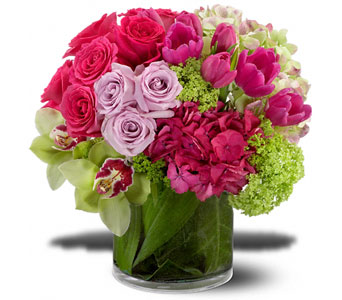 Premium Express Flower Arrangement in Norristown PA, Plaza Flowers