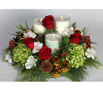 Seasons Greetings Centerpiece in Southampton PA, Domenic Graziano Flowers