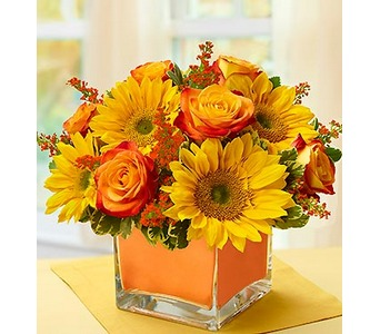 Modern Enchantment� for Fall  in Concord CA, Jory's Flowers