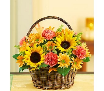 Fields of Europe� for Fall Basket  in Concord CA, Jory's Flowers
