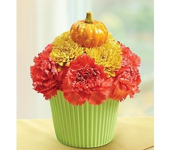Cupcake in Bloom� - Fall  in Concord CA, Jory's Flowers