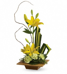 Teleflora's Bamboo Artistry in Murrells Inlet SC, Callas in the Inlet