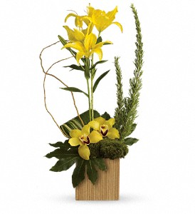 Teleflora's Bamboo Tropics in Pickering ON, Trillium Florist, Inc.