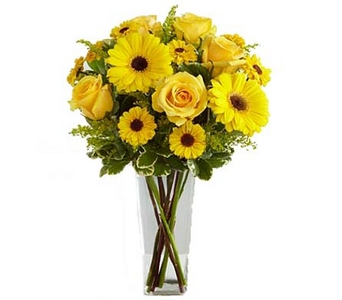 Vallejo City Floral Daylight� Bouquet in Concord CA, Vallejo City Floral Co
