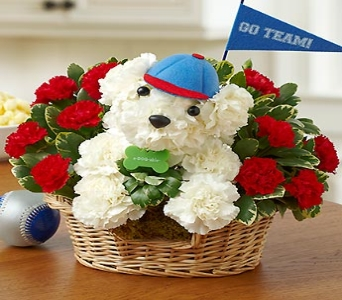 Sports Hound in Yelm WA, Yelm Floral