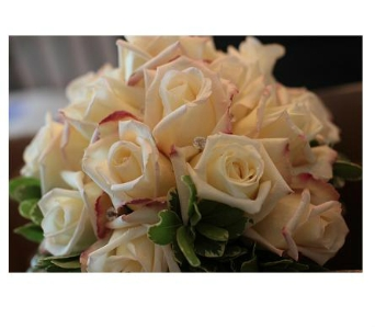 White Roses-01 in Freehold NJ, Especially For You Florist & Gift Shop