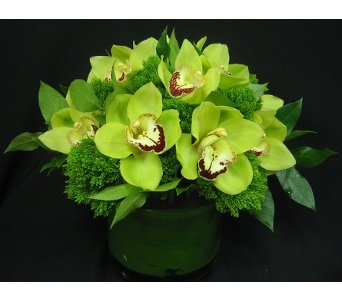 If The Sky Was Green in New York NY, Starbright Floral Design