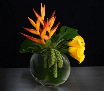 Orange Crush in La Jolla CA, Adelaide's Florists and Decorators