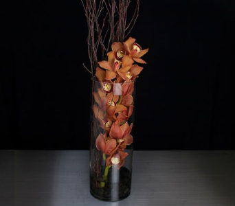 Autumn Orchid in La Jolla CA, Adelaide's Florists and Decorators