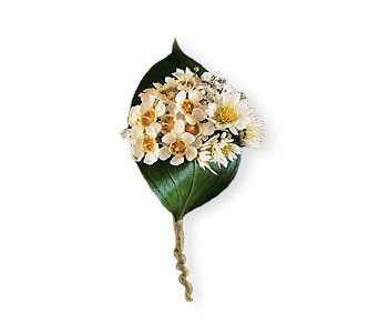Tiny Blossoms Boutonniere in Norwalk CT, Richard's Flowers, Inc.