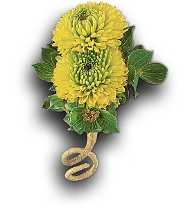 Chartreuse Chrysanthemum Boutonniere in Columbus OH, Flower Galaxy