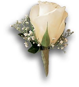 White Rose and Baby's Breath Boutonniere in Asheville NC, The Extended Garden Florist
