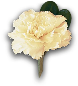White Carnation Boutonniere in Orlando FL, Harry's Famous Flowers