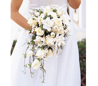 White Cascade Bridal Bouquet in Olean NY, Mandy's Flowers