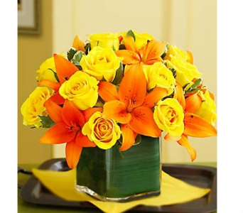 Modern Embrace� Fall Rose and Lily Cube in Watertown CT, Agnew Florist